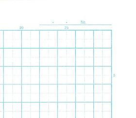 Rilakkuma skrivbok ( Grid  )