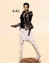 EXO KAI Acrylic Stand
