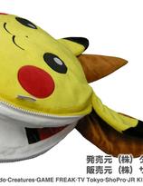 Pikachu and Eevee Reversible cushions
