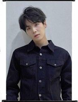 BTS Love Yourself: Tear 轉   Wallroll Pos ter  - small size -SUGA