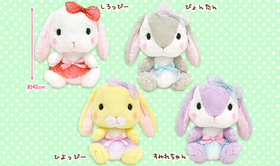 AMUSE  Poteusa Loppy  Fancy Collection