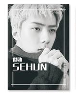 SEHUN Mini Posters