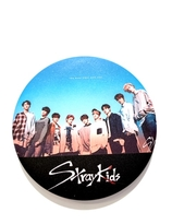 Stray Kids Badge