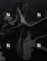 BTS - Wings (Random version)