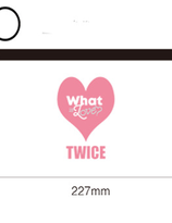 TWICe pen case