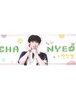 EXO    banderoll -   - CHANYEOL